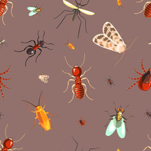 Insects Seamless Pattern With Moths, Ants, Cockroaches, Flies Vector Illustration