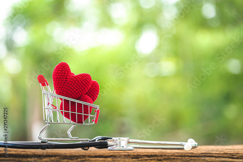 Shopping cart and the heart put on inside and stethoscope with showing  put on the wood in the public park, Buy insurance with love concept Canvas Print