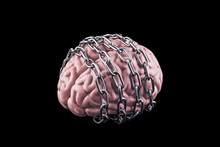 Human Brain With Chain. Free Y...