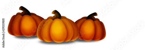 Photo  Pumpkin illustration