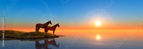 horses in island and sunset Wallpaper Mural