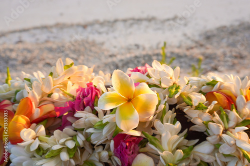 A lei of beautiful tropical flowers rests on a railing above a white sandy beach Wallpaper Mural