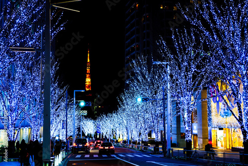 Photo sur Aluminium Tokyo Landscape of Japanese winter night view ( famous street named Keyakizaka ) in winter Tokyo Japan ( captured on the public road )