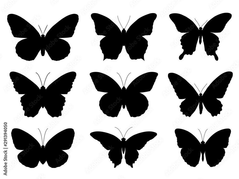 Fototapeta Set of silhouettes of butterflies,