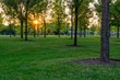 canvas print picture - Evening in the City Park