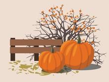 Pumpkins Next To The Berry Bush. Vector