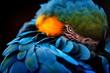 canvas print picture - blauer Papagei