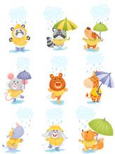Cute Cartoon Animals In The Rain. Vector Illustration.