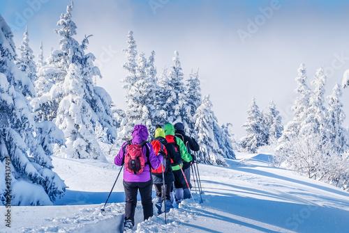 Fotografie, Tablou  Paysage de neige et raquettes