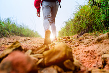 Woman Traveller Trekking Step ...
