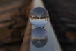 the mirror strip of the railway is reflected in the crystal ball