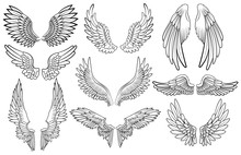 Set Of Angel Wings. Wings Coll...