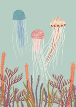 Jellyfish In Ocean With Sea Anemone