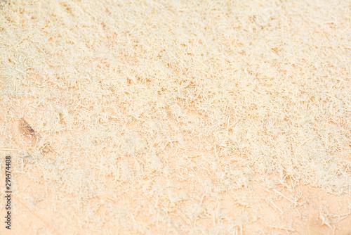 Fotografie, Obraz Wood sawdust abstract texture background.