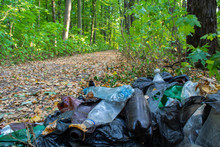 Garbage In The Forest, Consist...