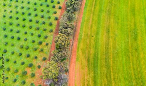 Red dirt part though farmland in Toodyay, Western Australia