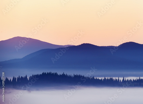 Silhouette of mountains and morning fog in a valley among coniferous forests Wallpaper Mural