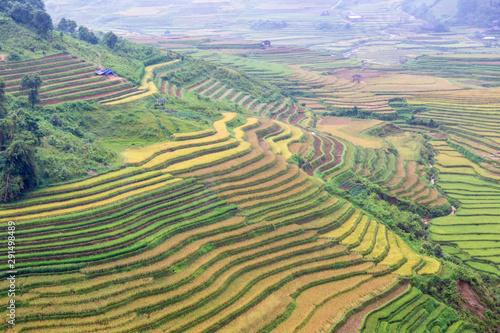 Foto auf Gartenposter Reisfelder Green terraces rice field at Mu Cang Chai