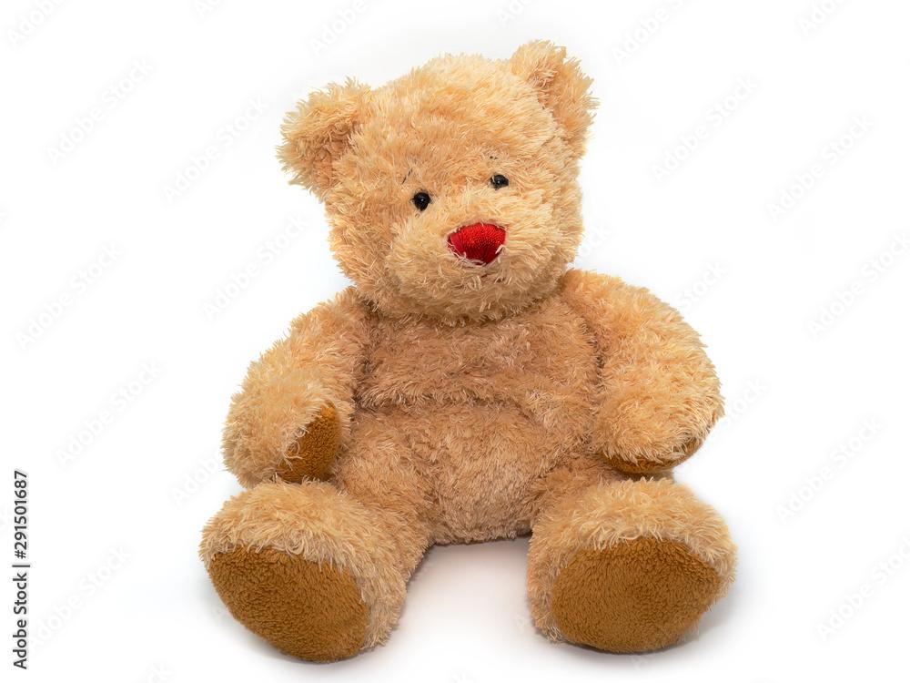 Fototapety, obrazy: teddy bear doll on white background.