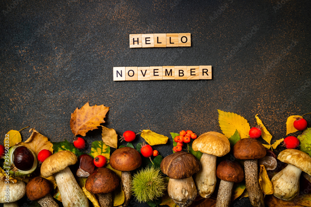 Fototapeta Autumn background. Hello November.  Mushrooms Boletus, chestnuts, wild berries, rowan on brown table. Autumn composition. Fall season mood, top view, copy space