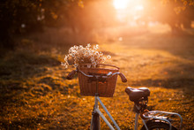 Bike With Basket With Flowers Against Nature Background