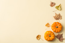 Autumn Fall Thanksgiving Day Composition With Decorative Orange Pumpkins
