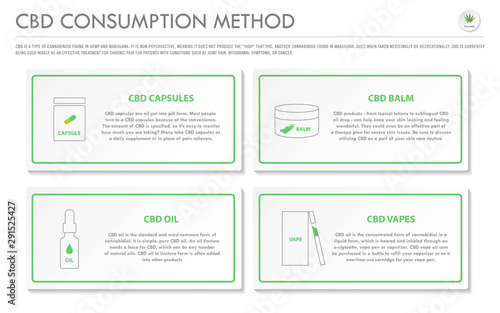 Fototapeta CBD Consumption Method horizontal business infographic illustration about cannabis as herbal alternative medicine and chemical therapy, healthcare and medical science vector. obraz