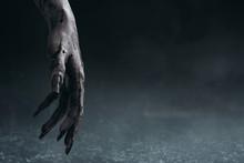 Bloody Zombie Hands, Halooween...