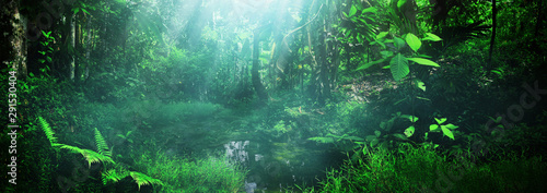 Poster Printemps Beautiful green forest panorama background