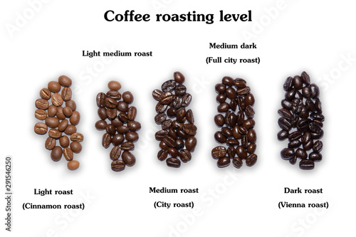 Selection of five different fresh dried roasted coffee beans arranged in a line Canvas Print