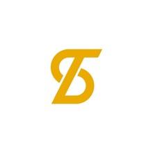 Ts Logo Vector Design