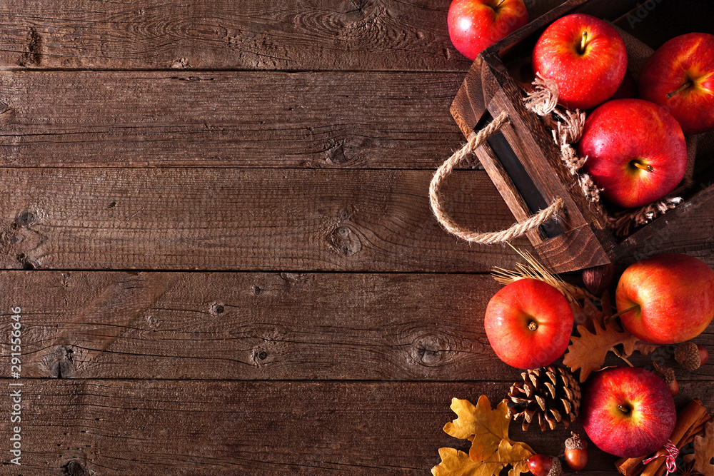 Fototapeta Autumn side border of apples and fall ingredients with crate on a rustic wood background. Copy space.