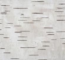 Gray Background With Horizonta...