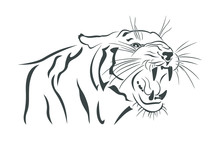 Tiger Black And White Silhouette