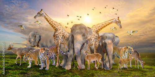 Large group of african safari animals Canvas Print