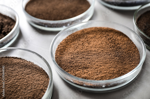 Stampa su Tela  Petri dishes with soil samples on grey table, closeup
