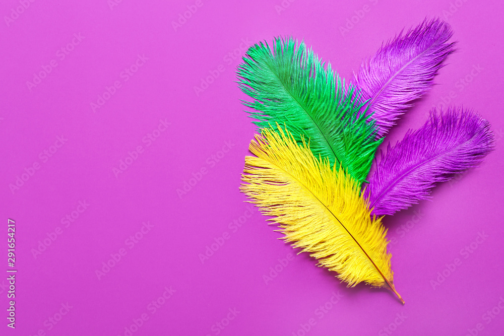 Fototapety, obrazy: Colorful feathers on color background