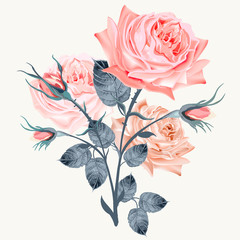 Panel Szklany Romantyczny Elegant and beautiful vector pink rose isolated on white in vintage high detailed style