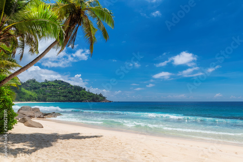 Poster de jardin Plage Tropical Sunny beach and coconut palms on Seychelles. Summer vacation and tropical beach concept.