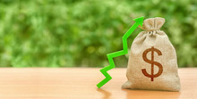 Money Bag With Dollar Symbol And Green Up Arrow. Increase Profits And Wealth. Growth Of Wages. Investment Attraction. Loans And Subsidies. Favorable Conditions. Favorable Conditions For Business.