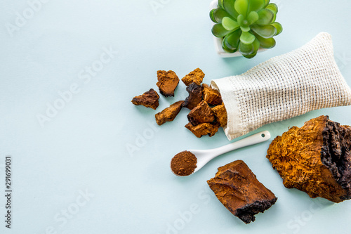 Flat lay view wild natural chaga mushroom, Inonotus obliquus powder and pieces for making tea and coffee Wallpaper Mural