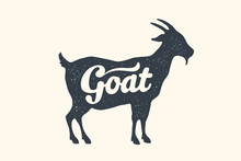 Goat, Lettering. Design Of Far...