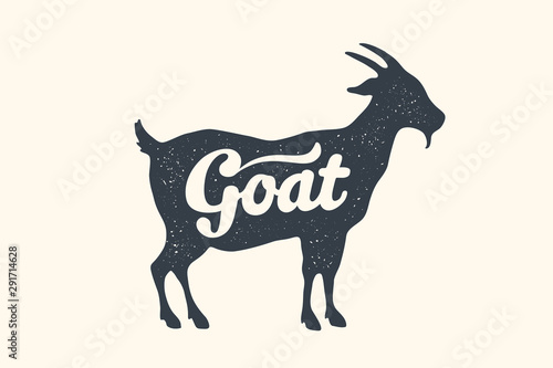 Photo Goat, lettering. Design of farm animals - Goat