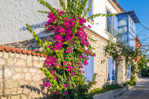 House with bougainvillaea Wallpaper Mural