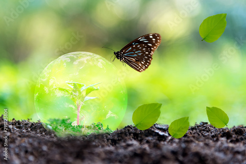 Obraz Glowing earth globe on soil with butterfly in the nature. World Environment and Save Economy. Earth image provided by Nasa. - fototapety do salonu