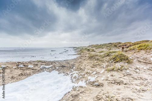 Fotografia Severe storm along Dutch North Sea coast put Beach to the dunes under water agai