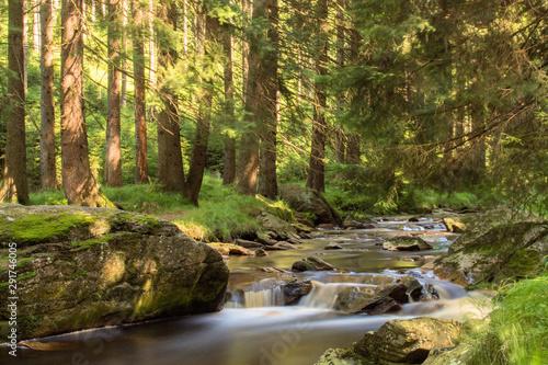 Garden Poster Forest river Langzeitbelichtung Gewässer im Erzgebirge an der schwarzen Pockau Fluss mit Steinen, Wald, Lichtstimmung, Naturschutzgebiet, Schwarzwassertal