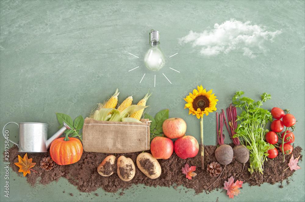 Fototapeta Autumn organic food produce