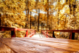 Wooden desk and autumn forest background.
