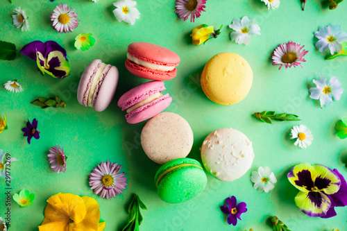 Fototapeta Colorful macaroons and flowers top view on green obraz